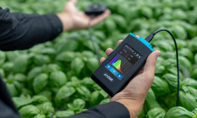 Measuring light in horticulture: PAR, PPF and PPFD
