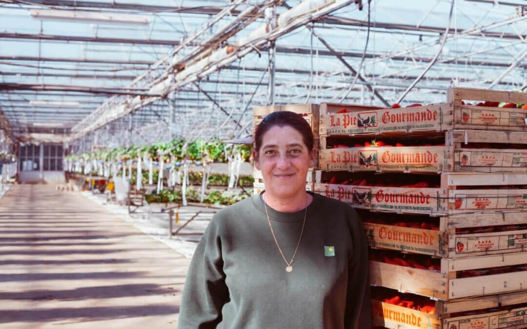 RED x RAT greenhouses