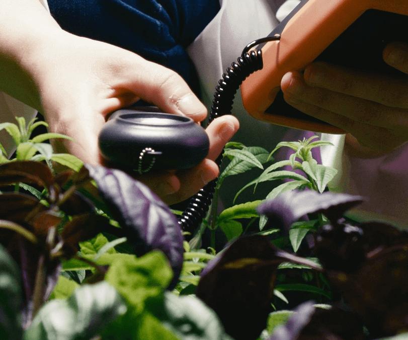 Unités de mesure en horticulture