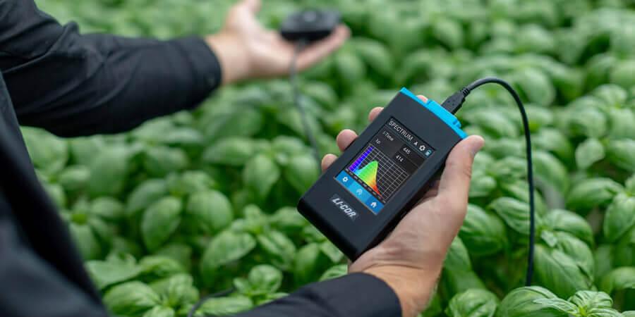 Mesurer la lumière en horticulture : PAR, PPF et PPFD